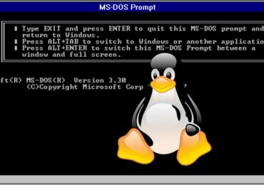 Góc lập trình: Lập trình viên tạo hệ thống con DOS cho Linux (DSL)