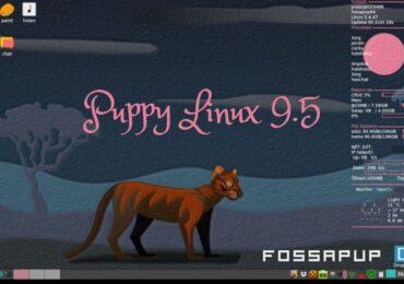 Puppy Linux 9.5 ra mắt: Phiên bản của Ubuntu 20.04 LTS