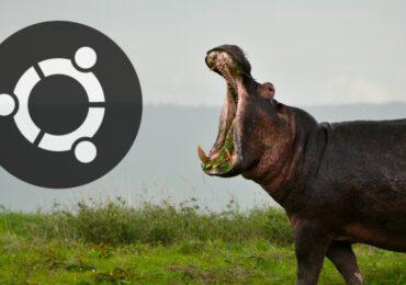 """Ubuntu 21.04 chính thức sẽ có tên là """"Hirsute Hippo"""""""